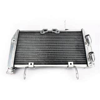 Aluminum Water Cooling Motorcycle Radiators for Street Bike DUCATI