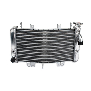 Polishing Aluminium Engine Cooling Radiator For Motorcycle